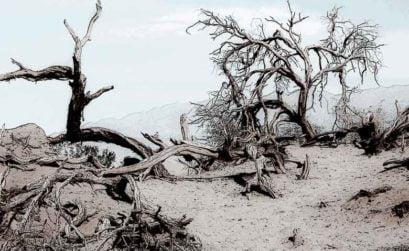 El valle de la muerte, entrega de el esclavo de los nueve espejos, de Raimundo Castro