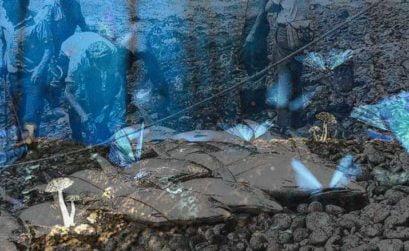 Atunes contra mariposas, entrega de A tres pasos de Luna, una novela de Beatriz Cáceres
